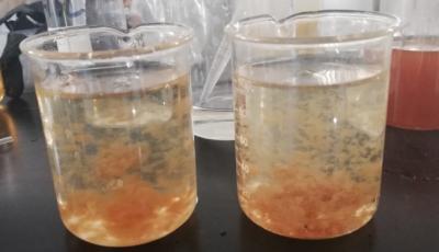 无锡田鑫化工带您了解焦化废水脱色过程